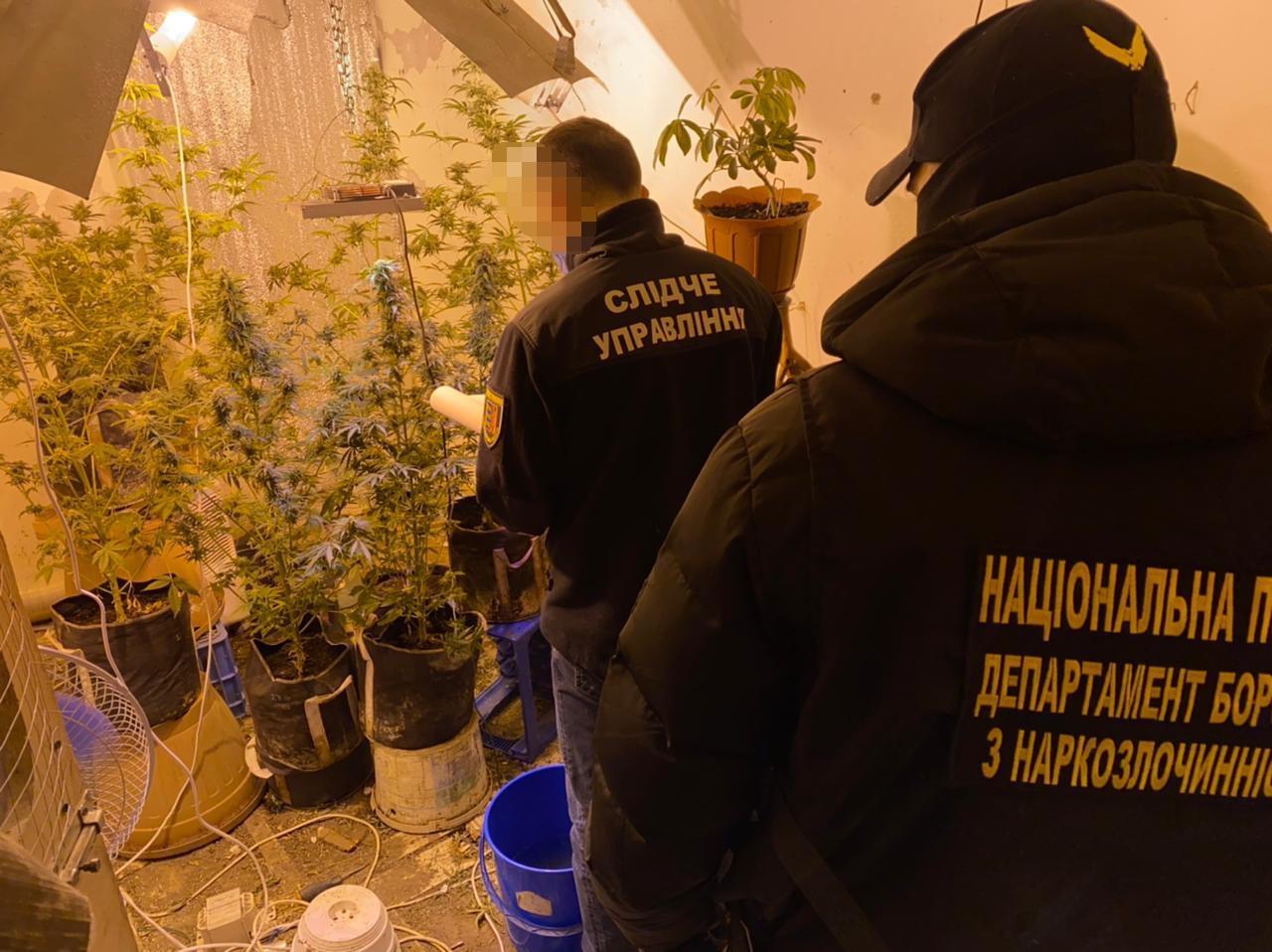 Правоохоронці викрили на Закарпатті мережу збуту наркотиків та психотропів (ВІДЕО)