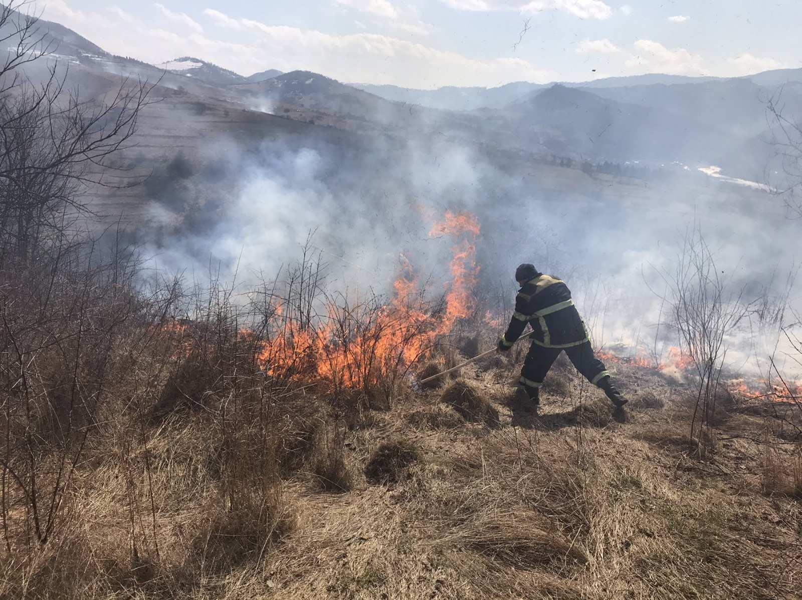 За спалювання сухої рослинності на відкритих територіях оштрафовано двох закарпатців