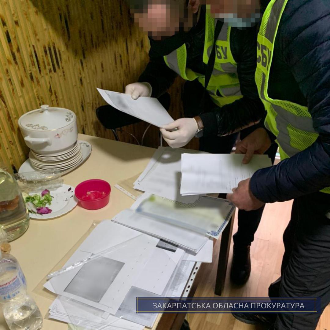 Посадовцям Держгеокадастру в Закарпатській області повідомлено про підозру в організації схеми з масштабного розкрадання земель
