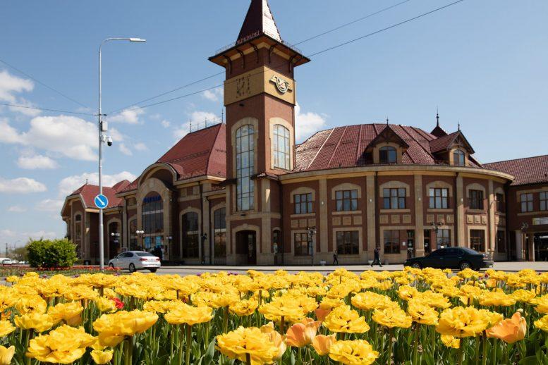 Близько 30 тисяч тюльпанів зараз квітнуть в Ужгороді