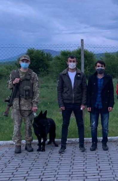 Двох турків, що збиралися незаконно перетнути кордон, затримали на Закарпатті