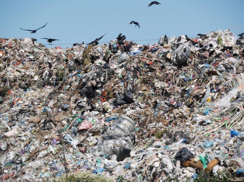 """В Ужгороді розпочалася """"війна"""" за перерозподіл сміттєвого ринку"""