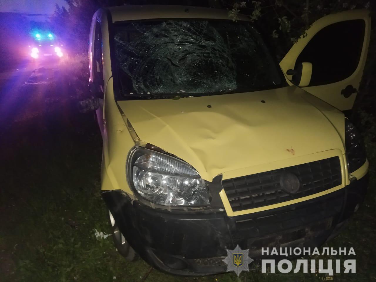 На Берегівщині водійка збила одразу двох велосипедистів – обидва з травмами у лікарні