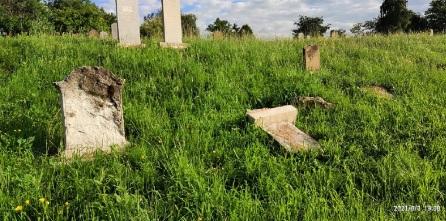 Невідомі зруйнували 10 надгробків на старому єврейському цвинтарі в Ужгороді