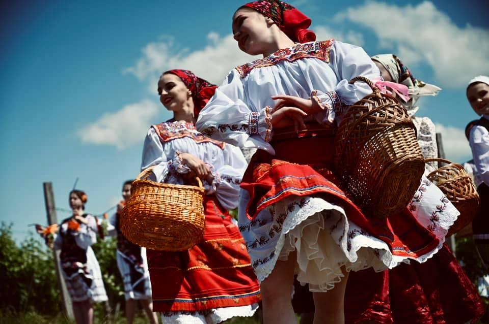Мистецький проект «Виноградна лоза» вразив різноманітністю культурних традицій Закарпаття