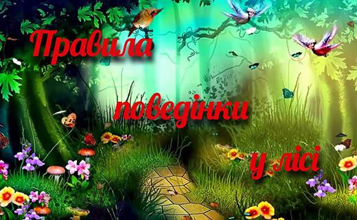 В Ужгороді представлять унікальну екорозмальовку «Як робить Маріанночка? Правила поведінки в лісі»