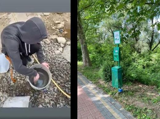 Підліток, який розтрощив станцію для прибирання за собаками в Ужгороді, відновив все власноруч