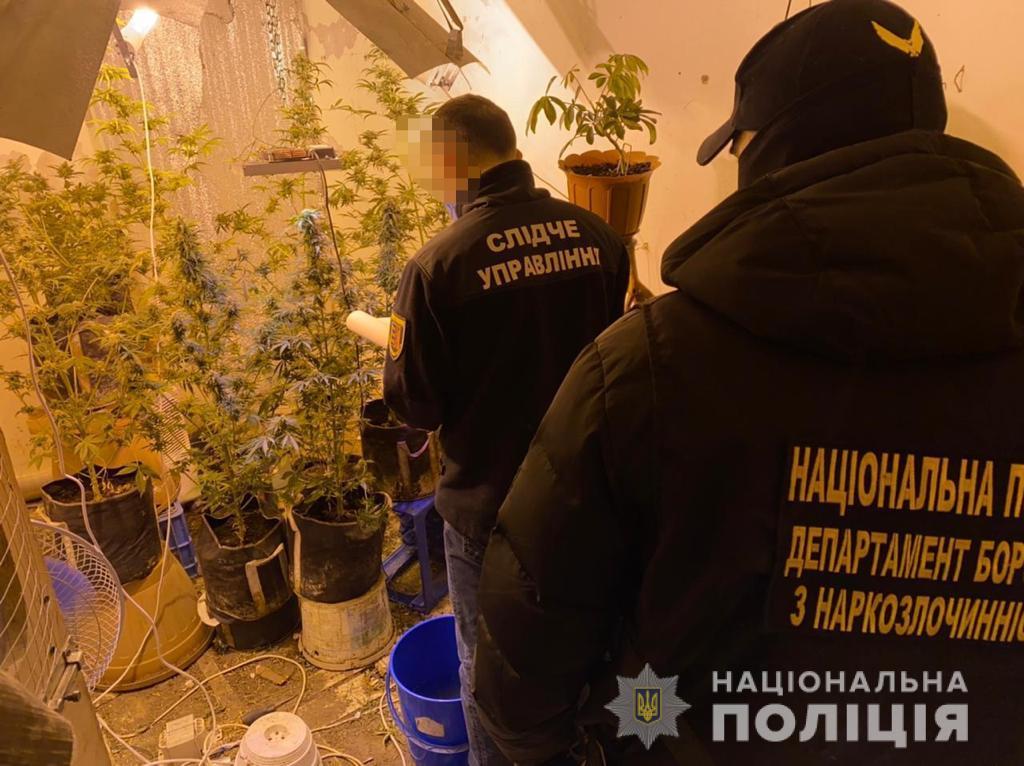На Закарпатті група наркоторговців постане перед судом