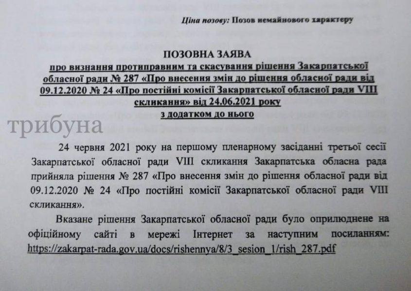 Фракція «Рідне Закарпаття» подала позов про скасування рішення облради щодо змін у Постійних комісіях (документ)