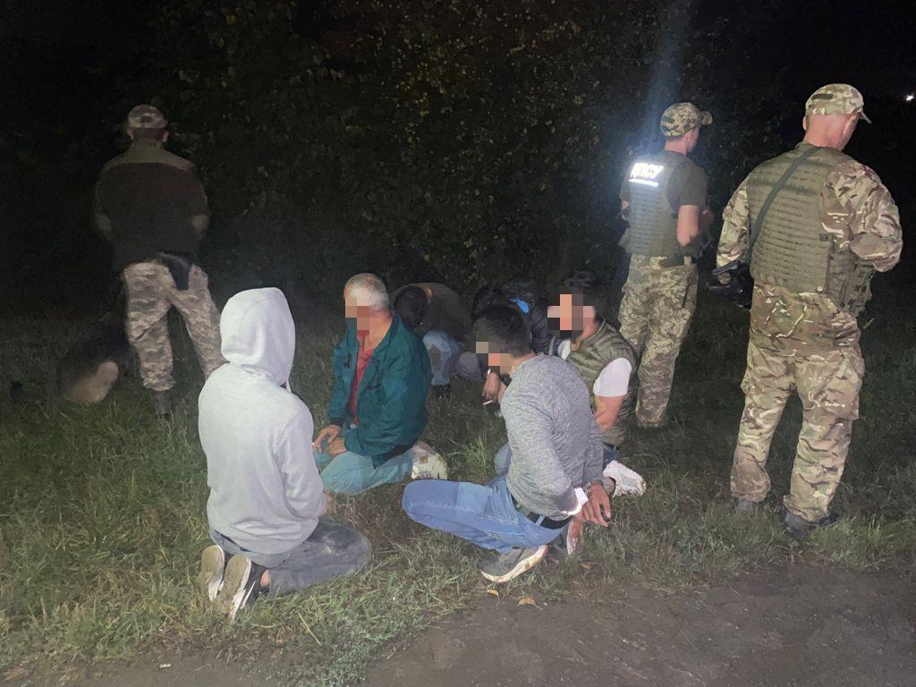 Шестеро турків-нелегалів намагалися сховатись у соняхах від закарпатських прикордонників
