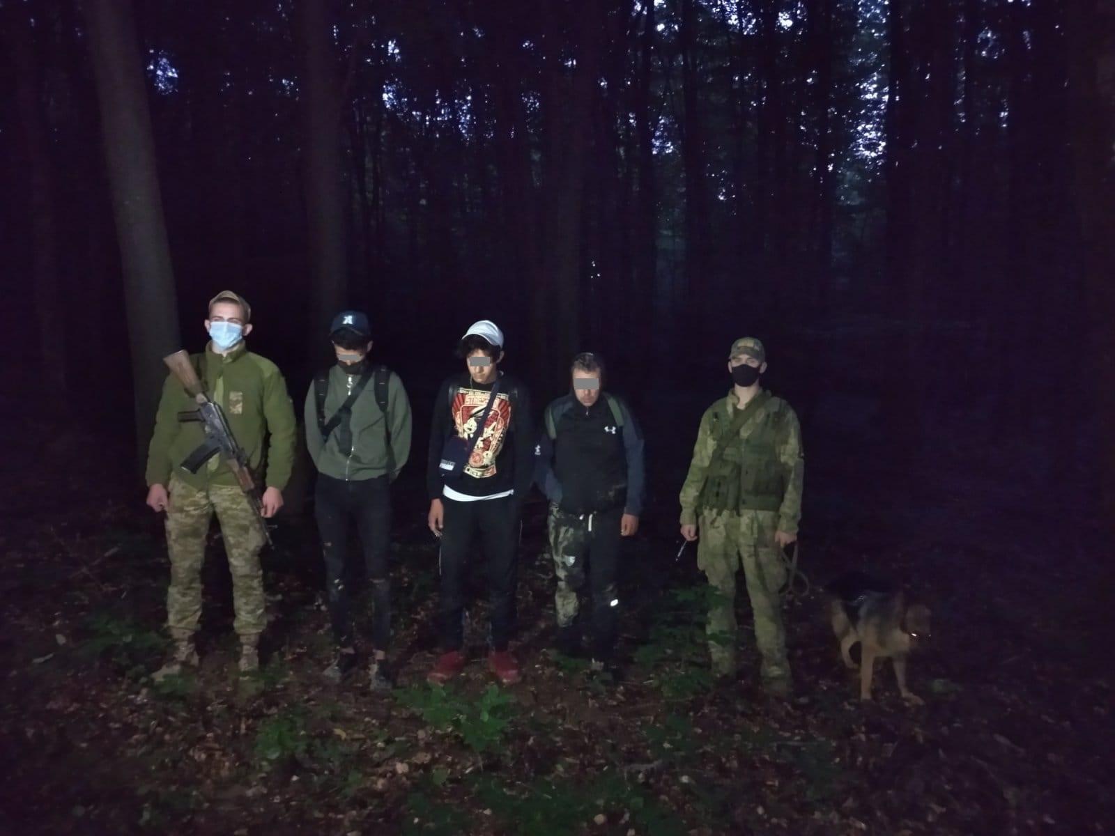 На Ужгородщині затримали групу алжирців, що пробиралися лісом до Словаччини