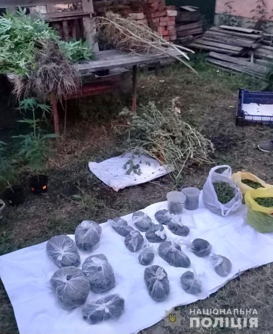 У мешканця Хуста поліціянти знайшли два кіло марихуани