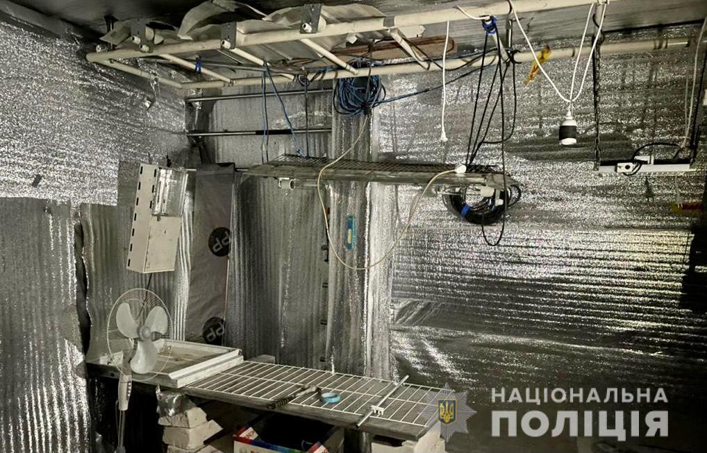 У помешканні жителя Виноградова поліцейські виявили кімнату, облаштовану для вирощування конопель