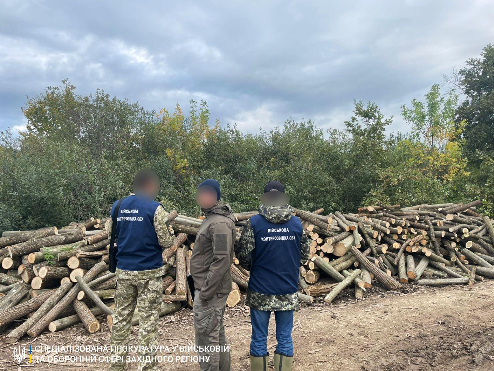 """На Закарпатті затримали 8 """"чорних лісорубів"""", що вирубали більше 200 дерев цінних порід"""