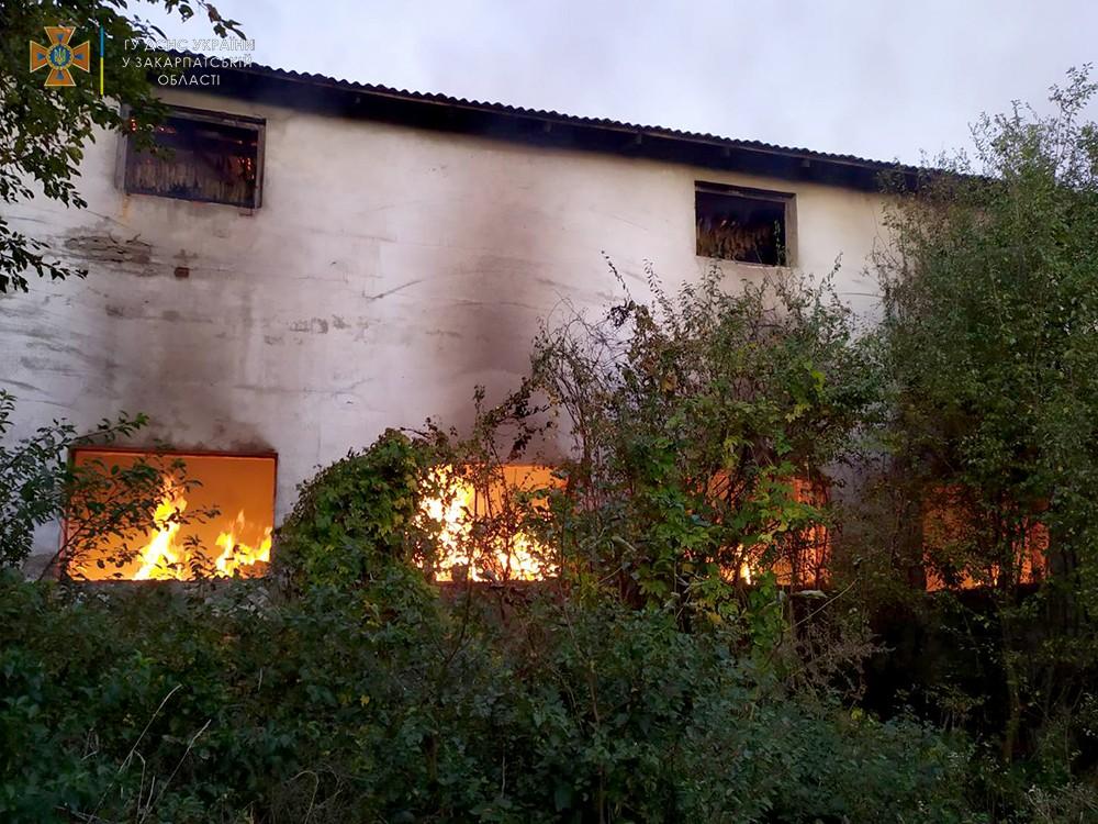 Масштабна пожежа на сільгосппідприємстві у Берегівському районі – згоріло 40 тонн сіна та 20 тонн листя тютюну